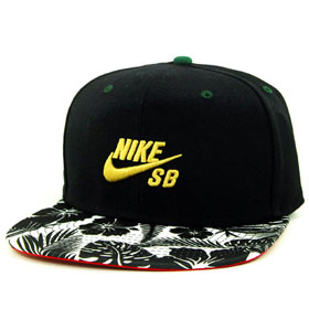 97d5a6bc1af Digital Product Toss Results  Nike SB Theotis Snapback Article at ...