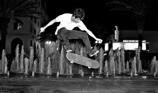 Visitor Photos Skatepark Of Tampa Photo