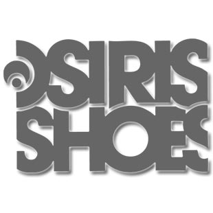 Osiris Footwear Chad Bartie Reason X Armourdillo Shoes