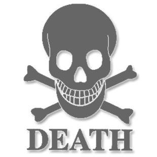 Death Skateboards Richie Jackson Pro Model Deck