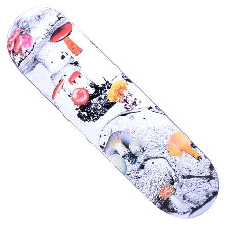 4bbde9555772 Quasi Tyler Bledsoe Mushroom Deck in stock at SPoT Skate Shop